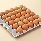 계란(특란)